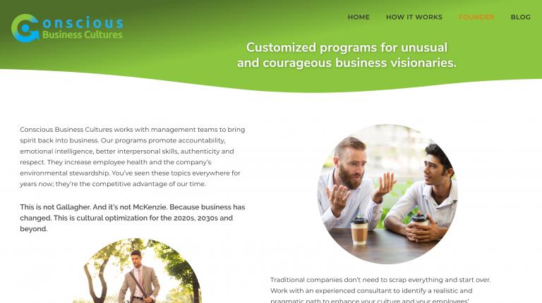 Conscious Business Cultures